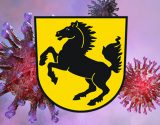 Coronavirus_Img-shutterstock-u-WappenStuttgart